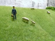 羊さん登場