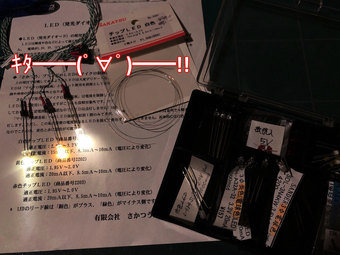 a840_sakatsuGlightkit+LEDs.jpg